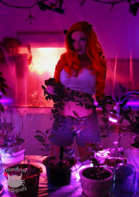 Wish as Poison Ivy