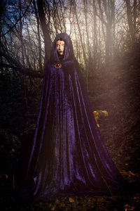 Blossom Of Faelivrin as Raven
